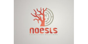 RATCHET - Noesis Consulting logo